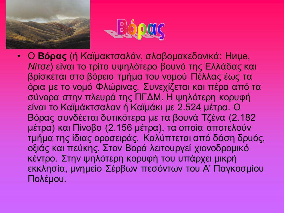Ο Βόρας (ή Καϊμακτσαλάν, σλαβομακεδονικά: Ниџе, Νίτσε) είναι το τρίτο υψηλότερο βουνό της Ελλάδας και βρίσκεται στο βόρειο τμήμα του νομού Πέλλας έως
