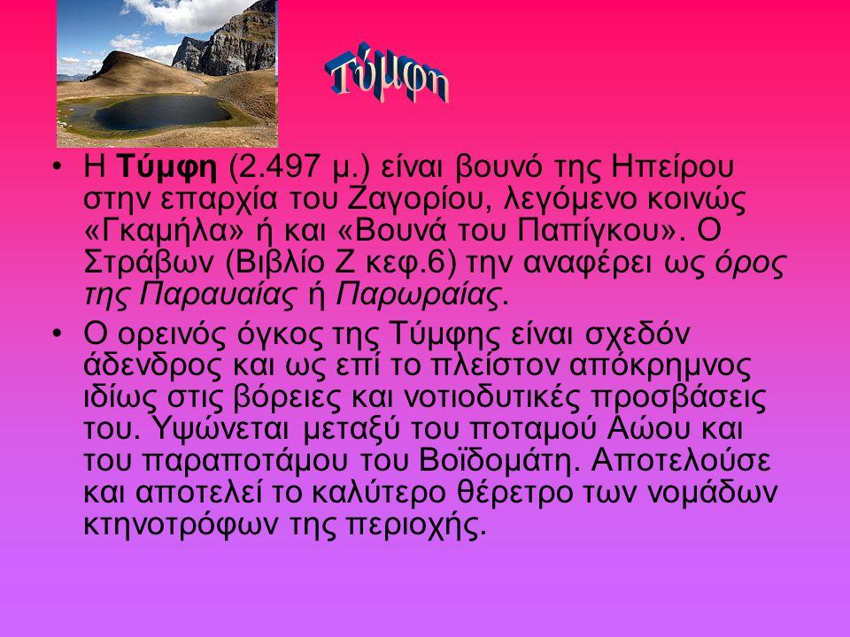 Η Τύμφη (2.497 μ.) είναι βουνό της Ηπείρου στην επαρχία του Ζαγορίου, λεγόμενο κοινώς «Γκαμήλα» ή και «Βουνά του Παπίγκου». Ο Στράβων (Βιβλίο Ζ κεφ.6)