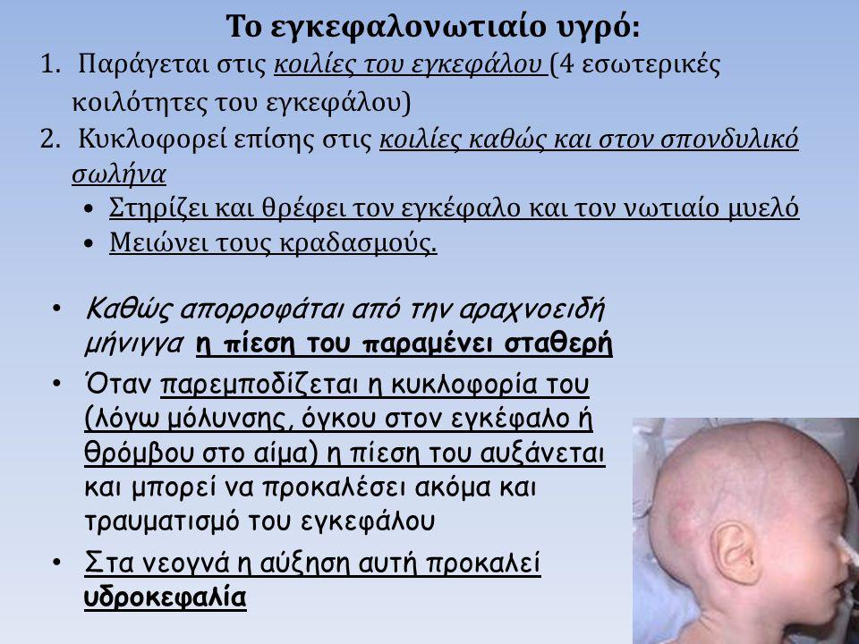 ..\videos\Comparison of the sympathetic and parasympathetic nervous systems www.