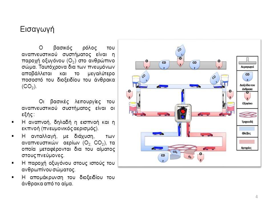 Αναερόβια γλυκόλυση 55 Αμέσως μετά την εξάντληση της PCr ενεργοποιείται η γλυκόλυση.