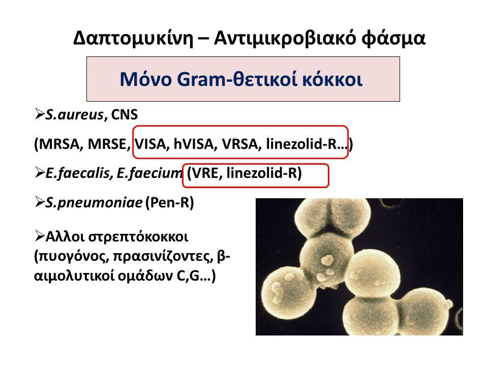 Δαπτομυκίνη – Αντιμικροβιακό φάσμα  S.aureus, CNS (MRSA, MRSE, VISA, hVISA, VRSA, linezolid-R…)  E.faecalis, E.faecium (VRE, linezolid-R)  S.pneumo