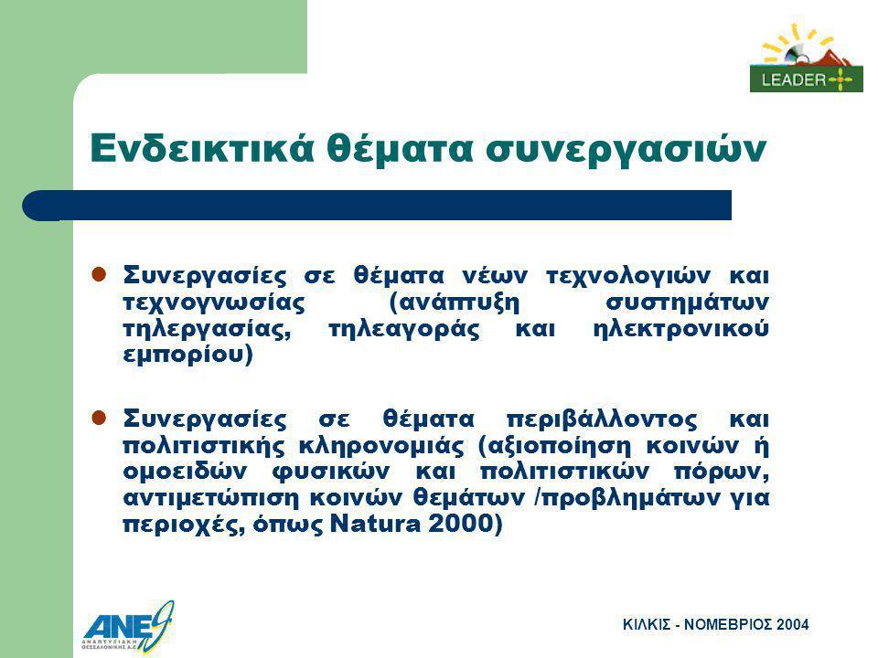 ΚΙΛΚΙΣ - ΝΟΜΕΒΡΙΟΣ 2004 Ενδεικτικά θέματα συνεργασιών Συνεργασίες σε θέματα νέων τεχνολογιών και τεχνογνωσίας (ανάπτυξη συστημάτων τηλεργασίας, τηλεαγοράς και ηλεκτρονικού εμπορίου) Συνεργασίες σε θέματα περιβάλλοντος και πολιτιστικής κληρονομιάς (αξιοποίηση κοινών ή ομοειδών φυσικών και πολιτιστικών πόρων, αντιμετώπιση κοινών θεμάτων /προβλημάτων για περιοχές, όπως Natura 2000)