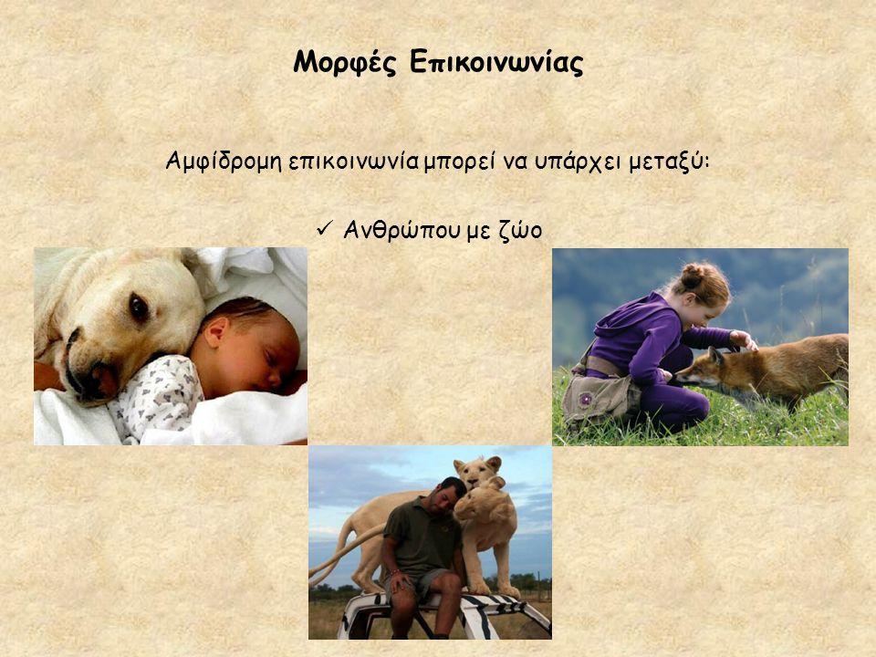 Μορφές Επικοινωνίας Αμφίδρομη επικοινωνία μπορεί να υπάρχει μεταξύ: Ανθρώπου με ζώο
