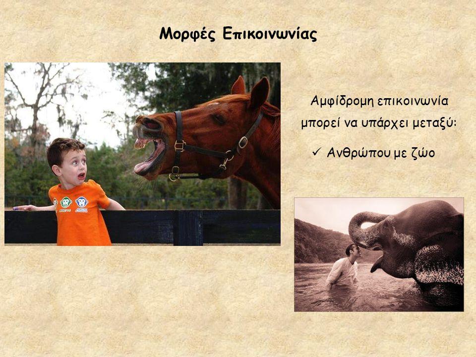 Μορφές Επικοινωνίας Ανθρώπου με ζώο Αμφίδρομη επικοινωνία μπορεί να υπάρχει μεταξύ: