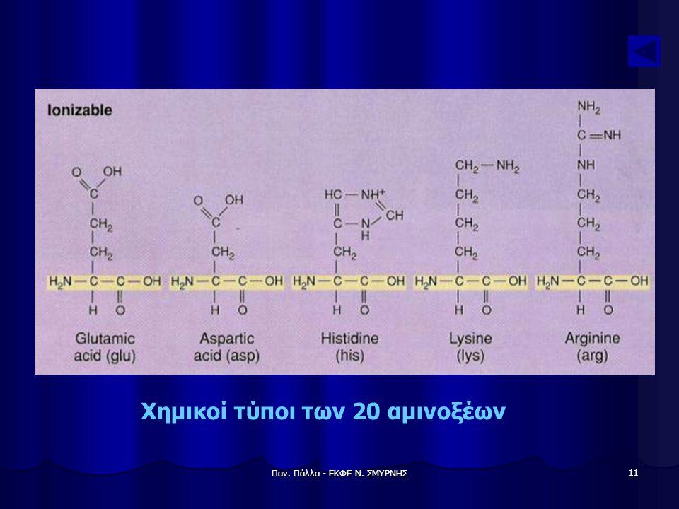 Παν. Πάλλα - ΕΚΦΕ Ν. ΣΜΥΡΝΗΣ 11 Χημικοί τύποι των 20 αμινοξέων