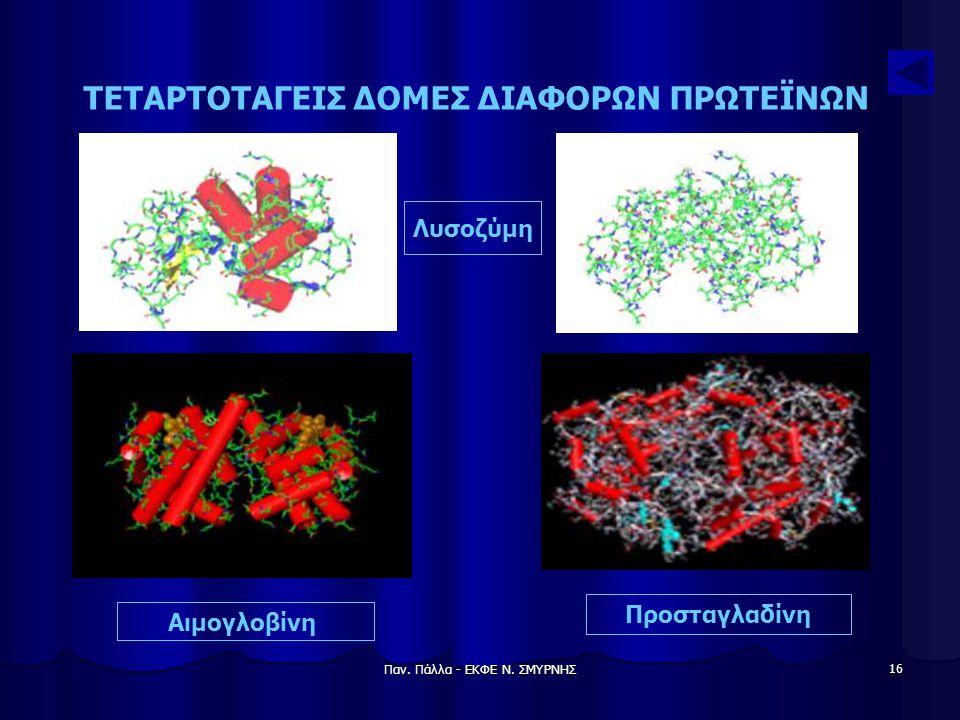 Παν. Πάλλα - ΕΚΦΕ Ν. ΣΜΥΡΝΗΣ 16 ΤΕΤΑΡΤΟΤΑΓΕΙΣ ΔΟΜΕΣ ΔΙΑΦΟΡΩΝ ΠΡΩΤΕΪΝΩΝ Λυσοζύμη Αιμογλοβίνη Προσταγλαδίνη