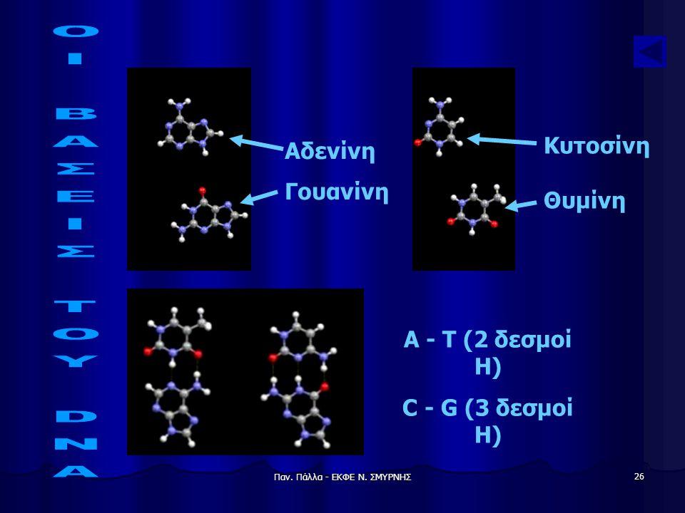 Παν. Πάλλα - ΕΚΦΕ Ν. ΣΜΥΡΝΗΣ 26 Αδενίνη Γουανίνη A - T (2 δεσμοί Η) C - G (3 δεσμοί Η) Κυτοσίνη Θυμίνη