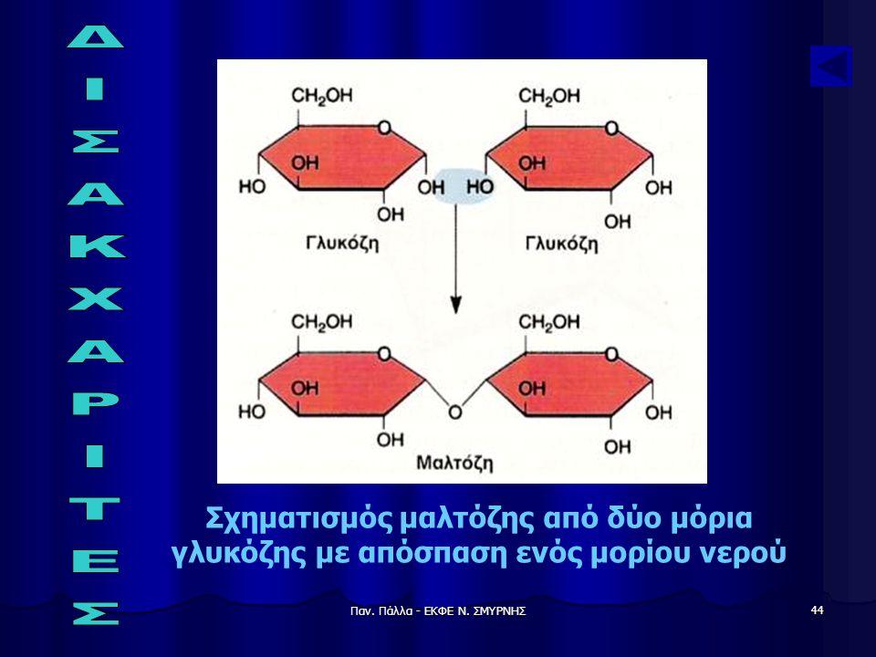 Παν. Πάλλα - ΕΚΦΕ Ν. ΣΜΥΡΝΗΣ 44 Σχηματισμός μαλτόζης από δύο μόρια γλυκόζης με απόσπαση ενός μορίου νερού
