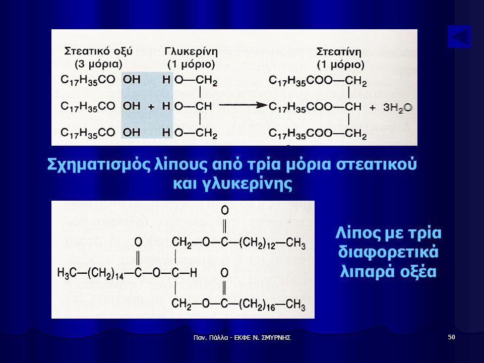 Παν. Πάλλα - ΕΚΦΕ Ν. ΣΜΥΡΝΗΣ 50 Σχηματισμός λίπους από τρία μόρια στεατικού και γλυκερίνης Λίπος με τρία διαφορετικά λιπαρά οξέα