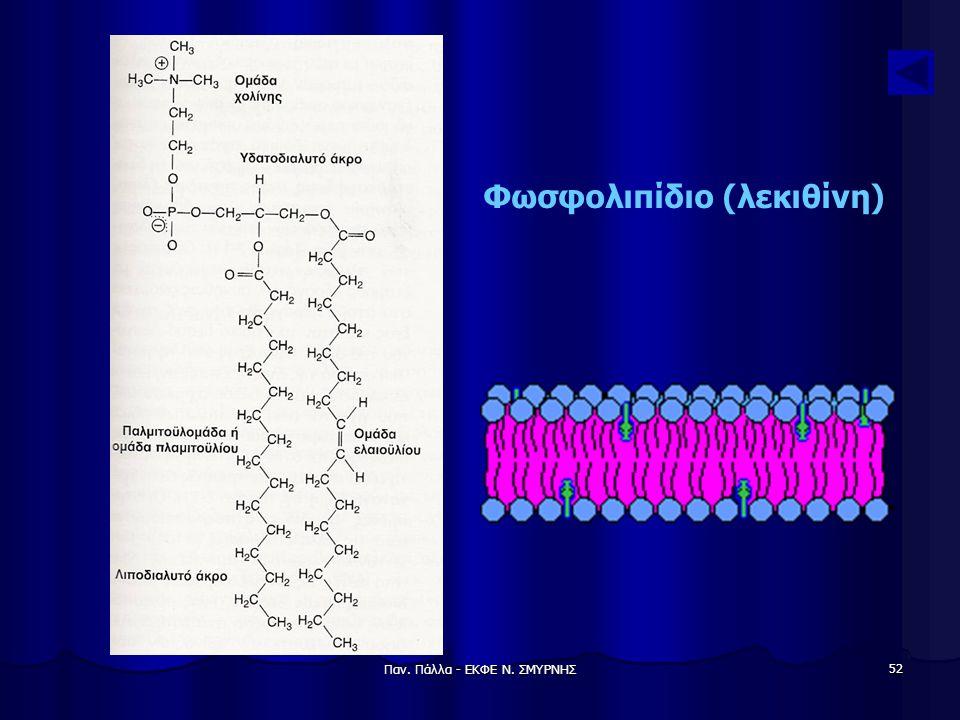 Παν. Πάλλα - ΕΚΦΕ Ν. ΣΜΥΡΝΗΣ 52 Φωσφολιπίδιο (λεκιθίνη)