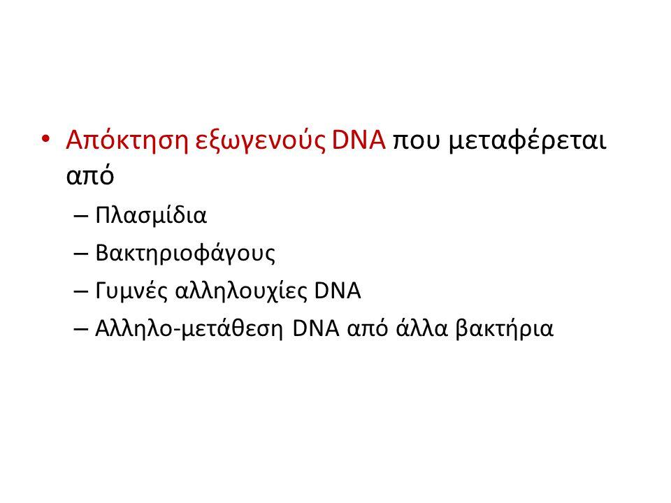 Απόκτηση εξωγενούς DNA που μεταφέρεται από – Πλασμίδια – Βακτηριοφάγους – Γυμνές αλληλουχίες DNA – Αλληλο-μετάθεση DNA από άλλα βακτήρια