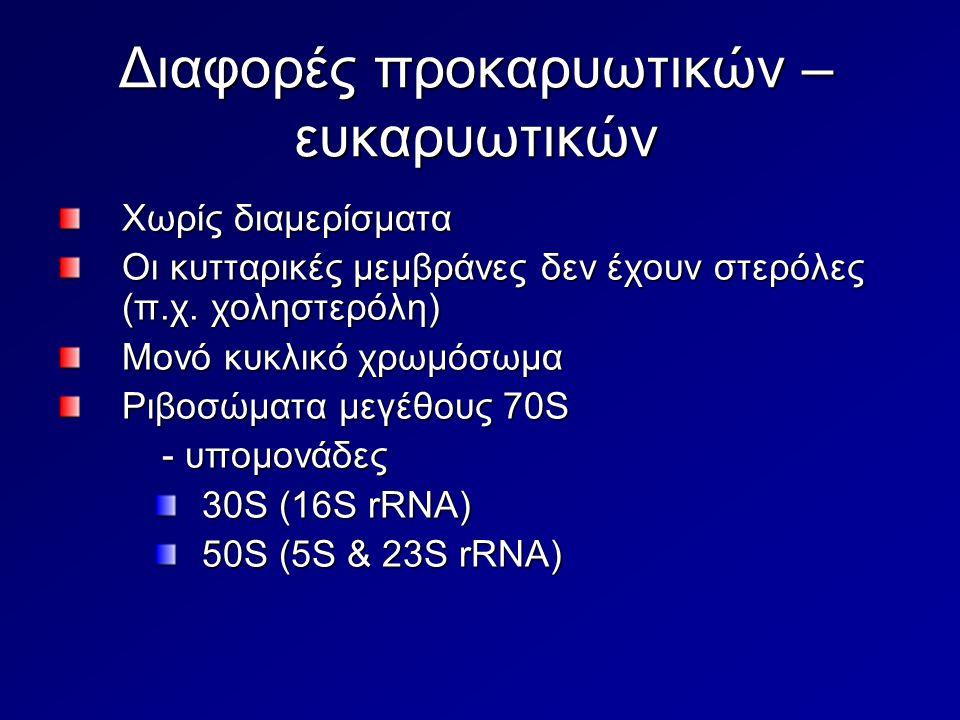Διαφορές προκαρυωτικών – ευκαρυωτικών Χωρίς διαμερίσματα Οι κυτταρικές μεμβράνες δεν έχουν στερόλες (π.χ. χοληστερόλη) Μονό κυκλικό χρωμόσωμα Ριβοσώμα