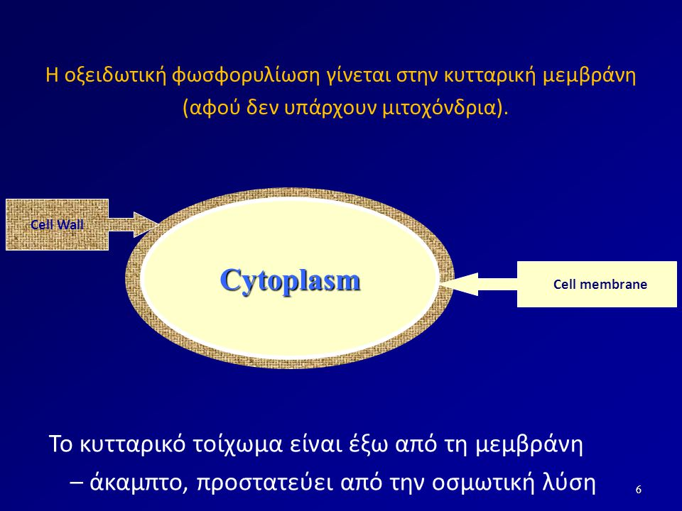 Αναστολείς της σύνθεσης της κυτταροπλασματικής μεμβράνης Φάρμακα που αποδιοργανώνουν την κυτταρική μεμβράνη – Πολυμυξίνες Φάρμακα που παράγουν πόρους (τρύπες) στις μεμβράνες – Γραμισιδίνες – Αμφοτερικίνη Β (μύκητες)