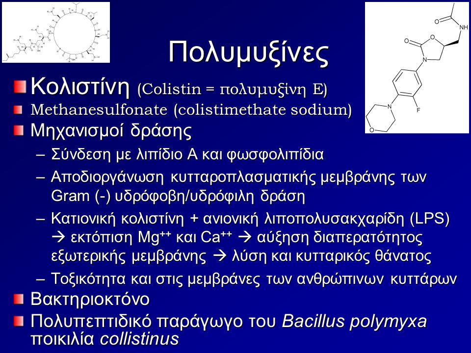 Πολυμυξίνες Κολιστίνη (Colistin = πολυμυξίνη Ε) Methanesulfonate (colistimethate sodium) Μηχανισμοί δράσης –Σύνδεση με λιπίδιο Α και φωσφολιπίδια –Απο