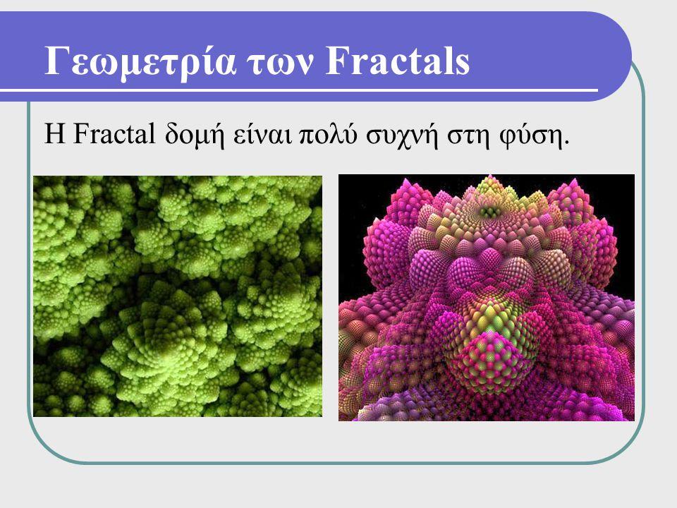 Η Fractal δομή είναι πολύ συχνή στη φύση.