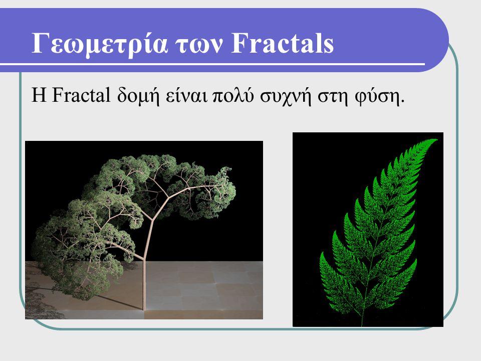 Γεωμετρία των Fractals Η Fractal δομή είναι πολύ συχνή στη φύση.