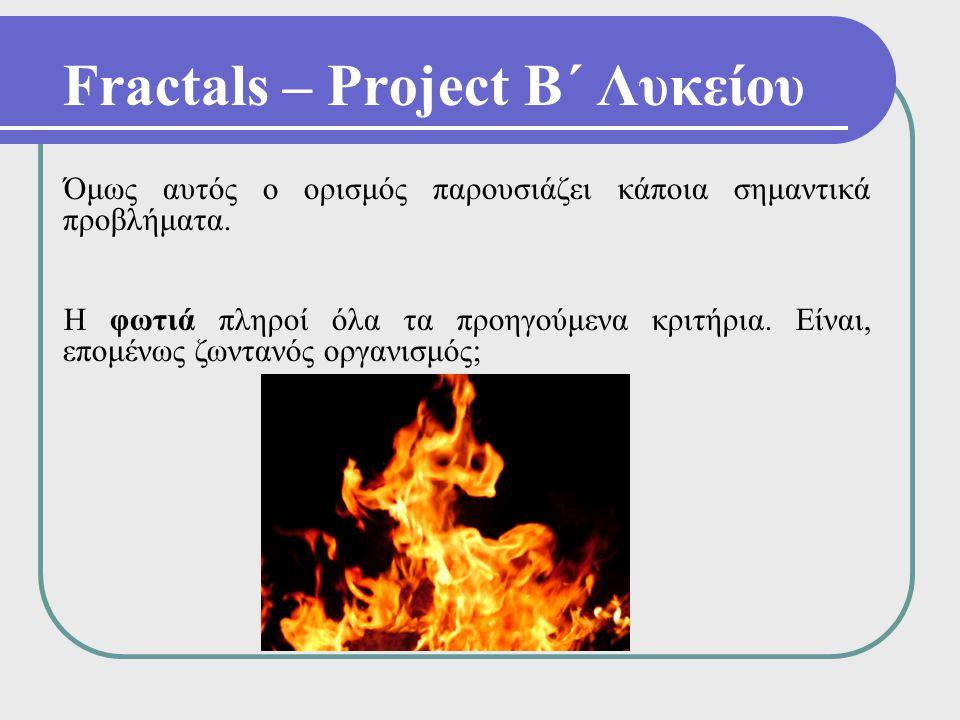 Fractals – Project Β΄ Λυκείου Όμως αυτός ο ορισμός παρουσιάζει κάποια σημαντικά προβλήματα. Η φωτιά πληροί όλα τα προηγούμενα κριτήρια. Είναι, επομένω