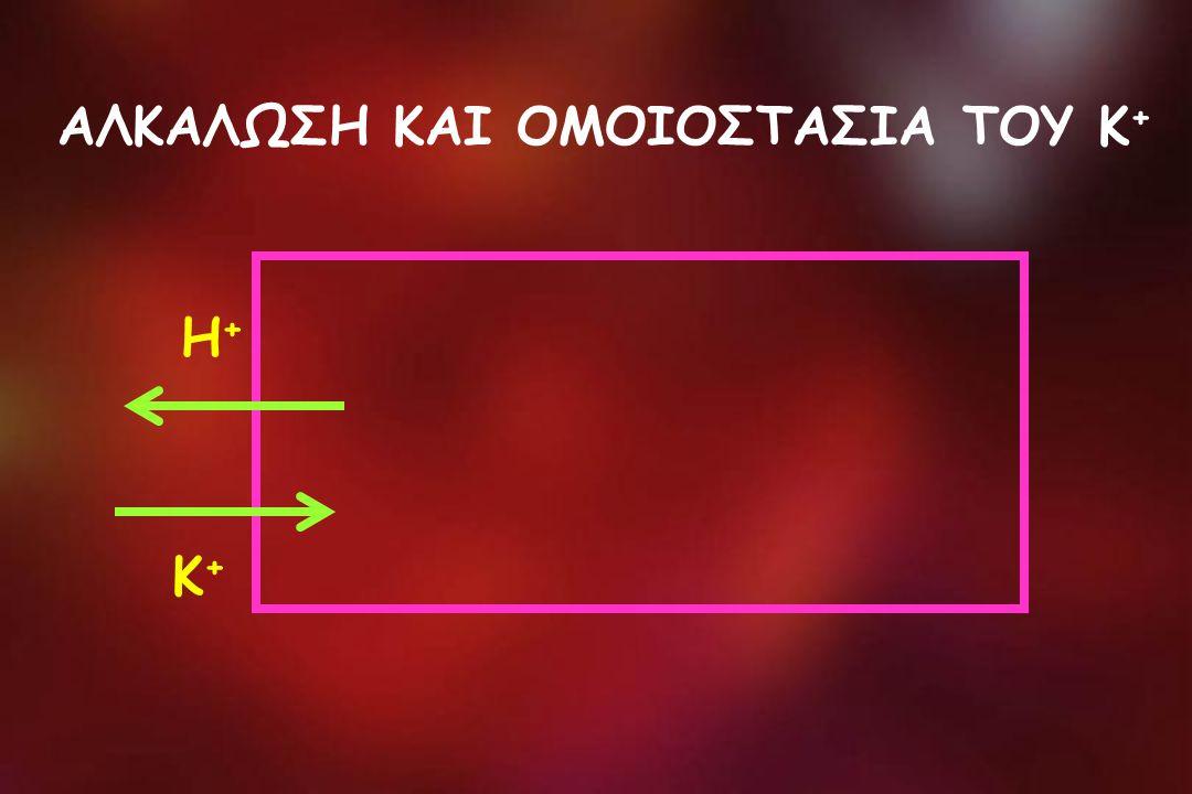ΑΛΚΑΛΩΣΗ ΚΑΙ ΟΜΟΙΟΣΤΑΣΙΑ ΤΟΥ Κ + Η+Η+ Κ+Κ+