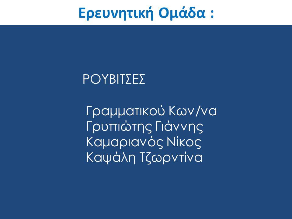 Ερευνητική Ομάδα : ΡΟΥΒΙΤΣΕΣ Γραμματικού Κων/να Γρυπιώτης Γιάννης Καμαριανός Νίκος Καψάλη Τζωρντίνα