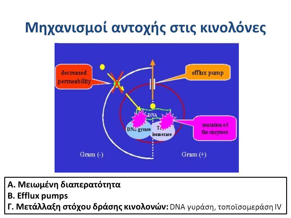 Μηχανισμοί αντοχής στις κινολόνες Α. Μειωμένη διαπερατότητα Β. Efflux pumps Γ. Μετάλλαξη στόχου δράσης κινολονών: DNA γυράση, τοποϊσoμεράση IV