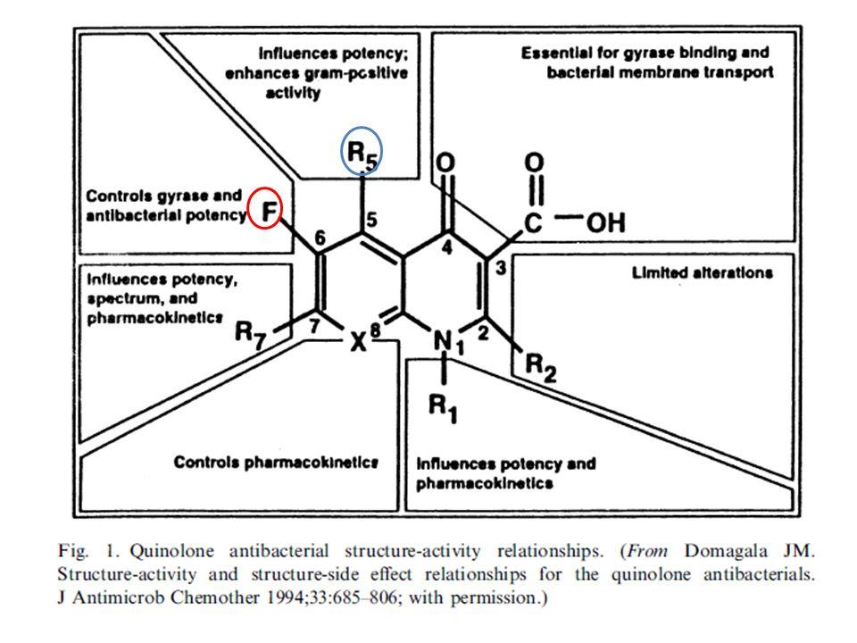 Συνιστώμενη αγωγή σε επιπλεγμένη έξαρση Αμοξικιλλίνη/Κλαβουλανικό: 875/125 mg x 2 ή 500/125 mg x 3 Αμπικιλλίνη/Σουλμπακτάμη: 750 mg x 2 Μοξιφλοξασίνη: 400 mg x 1 Λεβοφλοξασίνη: 500 mg x 1 Σιπροφλοξασίνη: 500 mg x 2 (μόνο για τους ασθενείς με παράγοντες κινδύνου για Pseudomonas aeruginosa.Πρέπει να ληφθούν καλλιέργειες)
