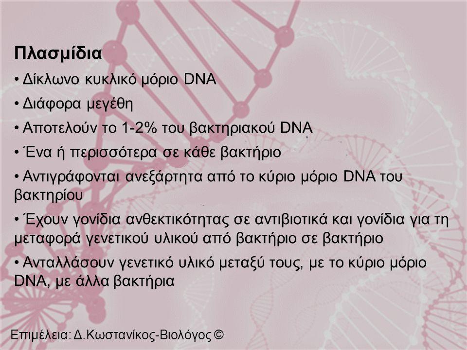 Πλασμίδια Δίκλωνο κυκλικό μόριο DNA Διάφορα μεγέθη Αποτελούν το 1-2% του βακτηριακού DNA Ένα ή περισσότερα σε κάθε βακτήριο Αντιγράφονται ανεξάρτητα α