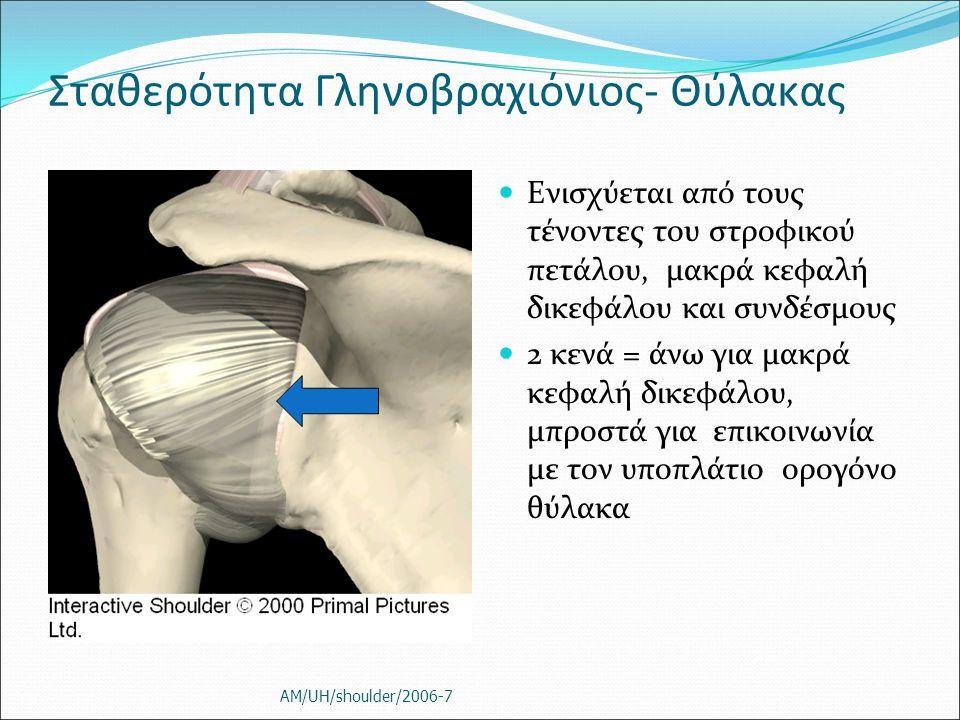 Σταθερότητα Γληνοβραχιόνιος- Θύλακας Ενισχύεται από τους τένοντες του στροφικού πετάλου, μακρά κεφαλή δικεφάλου και συνδέσμους 2 κενά = άνω για μακρά