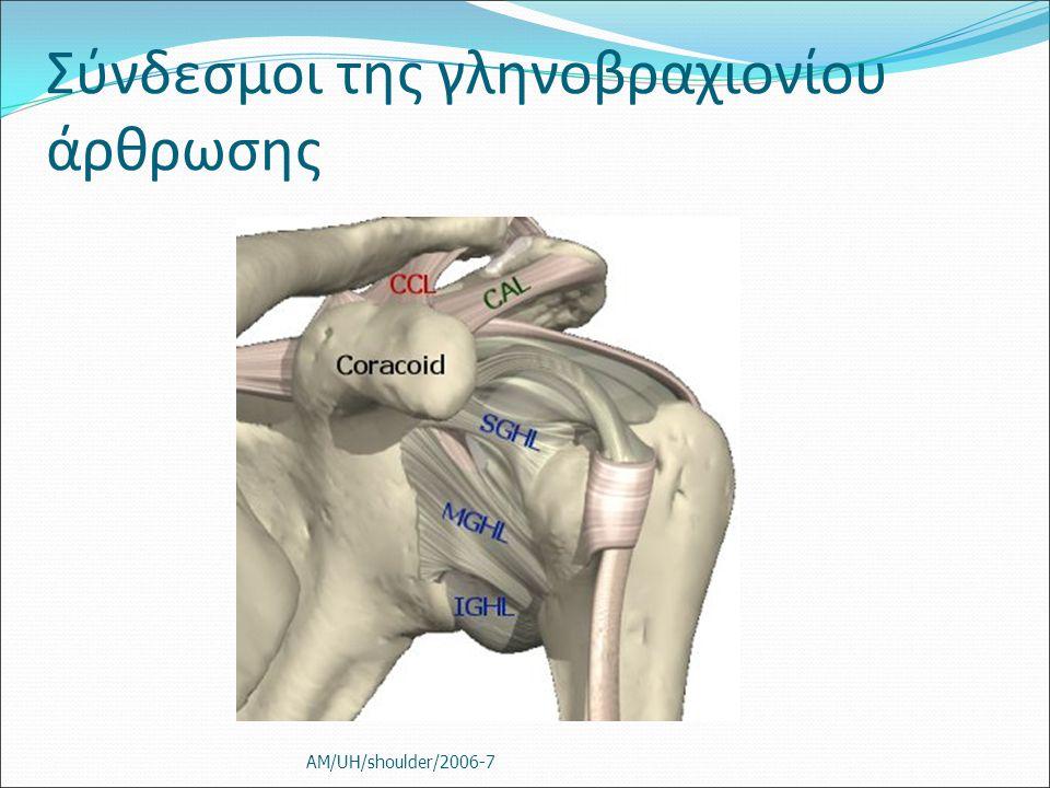 Σύνδεσμοι της γληνοβραχιονίου άρθρωσης AM/UH/shoulder/2006-7