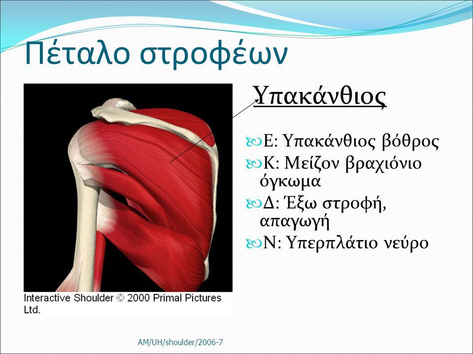 Πέταλο στροφέων Υπακάνθιος Ε: Υπακάνθιος βόθρος K: Μείζον βραχιόνιο όγκωμα Δ: Έξω στροφή, απαγωγή Ν: Υπερπλάτιο νεύρο AM/UH/shoulder/2006-7