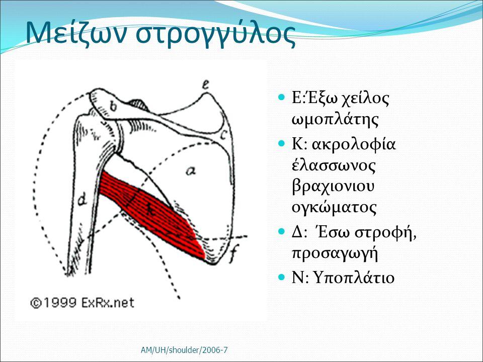 Μείζων στρογγύλος Ε:Έξω χείλος ωμοπλάτης Κ: ακρολοφία έλασσωνος βραχιονιου ογκώματος Δ: Έσω στροφή, προσαγωγή Ν: Υποπλάτιο AM/UH/shoulder/2006-7