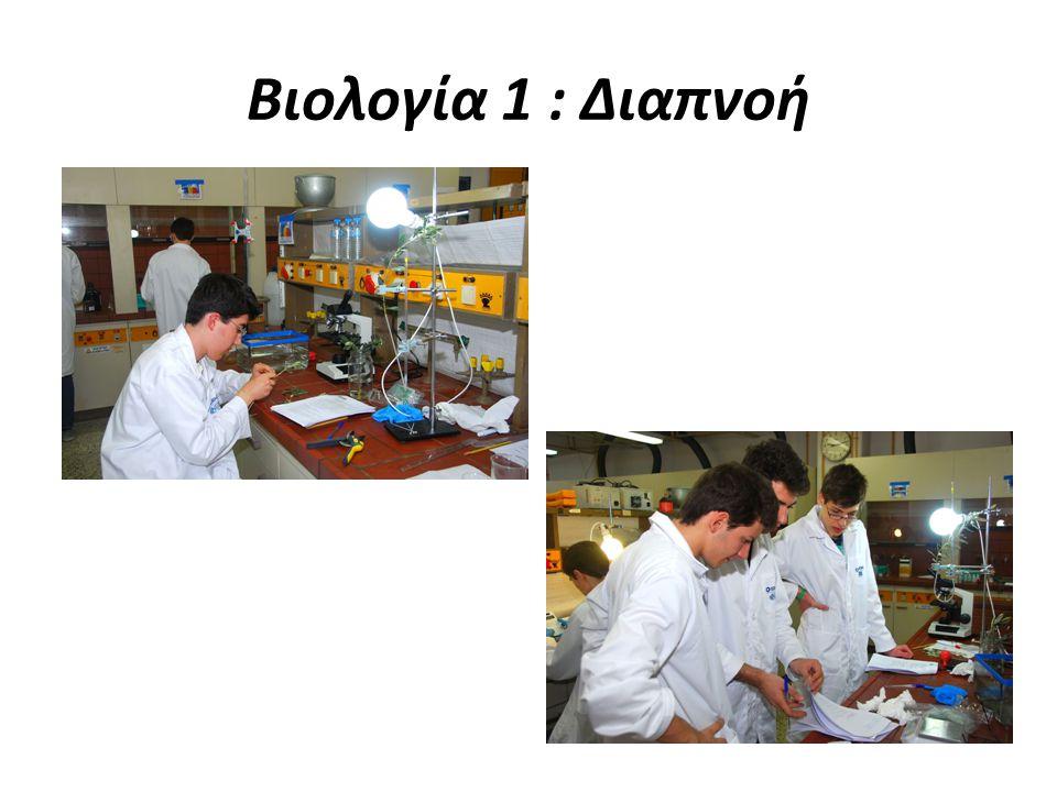 Βιολογία 1 : Διαπνοή