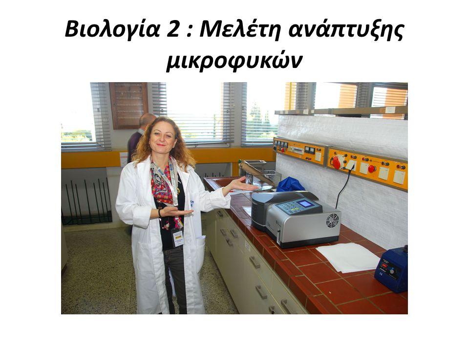 Βιολογία 2 : Μελέτη ανάπτυξης μικροφυκών