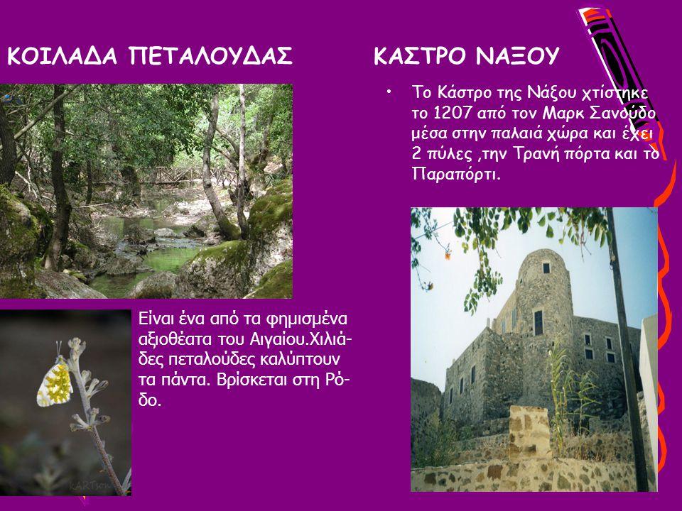 ΚΟΙΛΑΔΑ ΠΕΤΑΛΟΥΔΑΣ ΚΑΣΤΡΟ ΝΑΞΟΥ Το Κάστρο της Νάξου χτίστηκε το 1207 από τον Μαρκ Σανούδο μέσα στην παλαιά χώρα και έχει 2 πύλες,την Τρανή πόρτα και το Παραπόρτι.