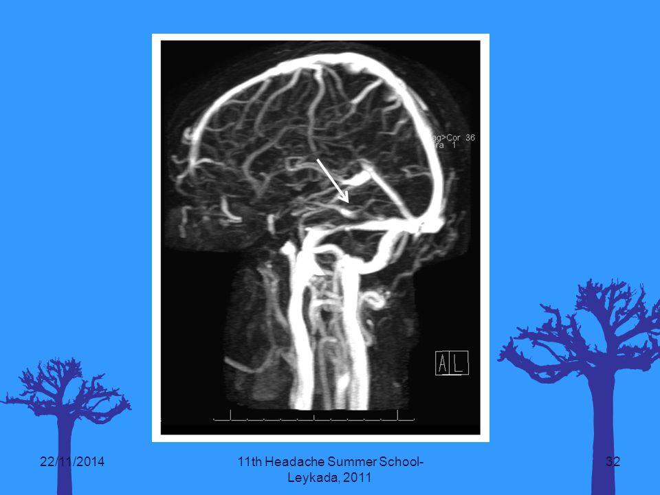 22/11/201411th Headache Summer School- Leykada, 2011 32