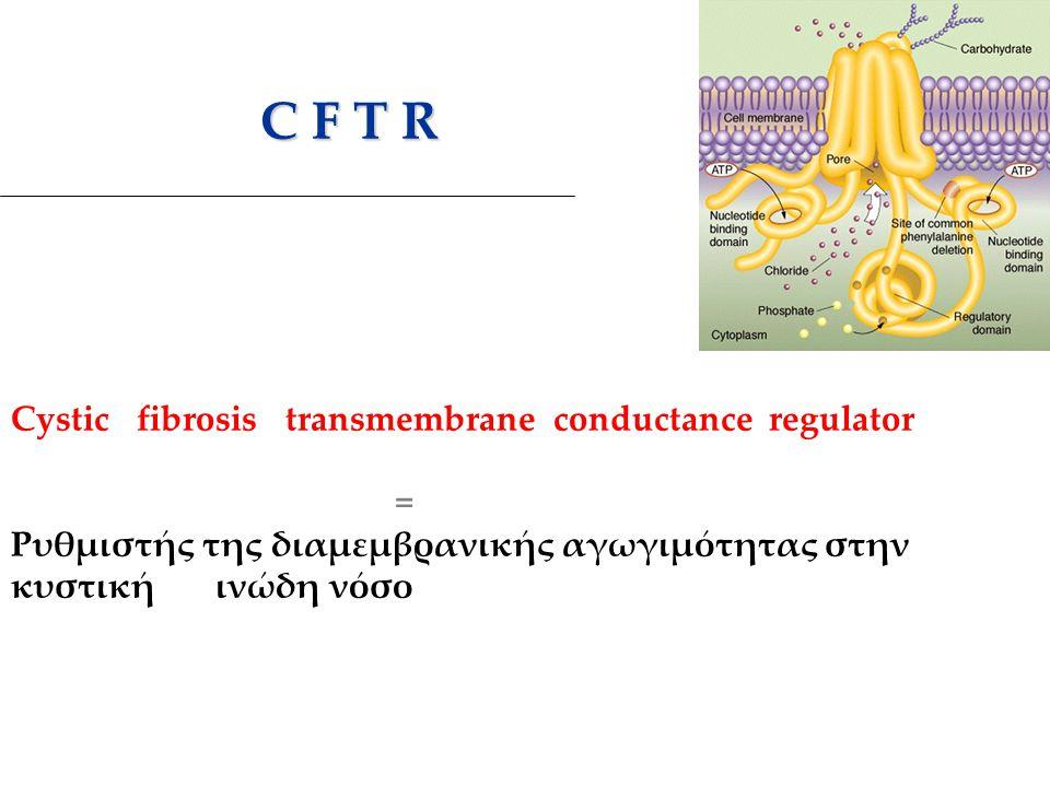 C F T R C F T R Cystic fibrosis transmembrane conductance regulator = Ρυθμιστής της διαμεμβρανικής αγωγιμότητας στην κυστική ινώδη νόσο