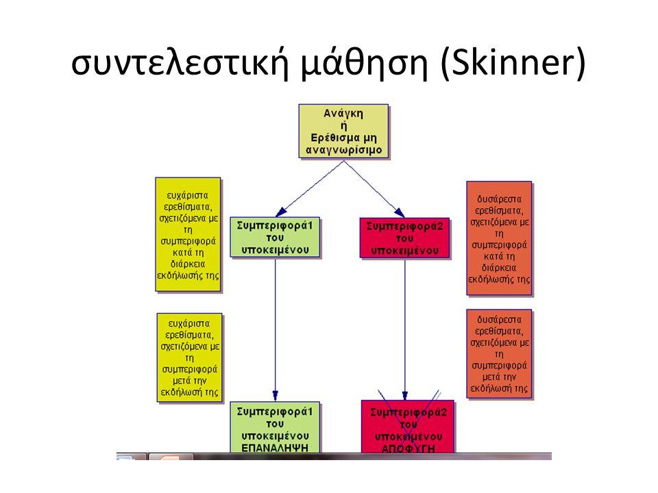 συντελεστική μάθηση (Skinner)