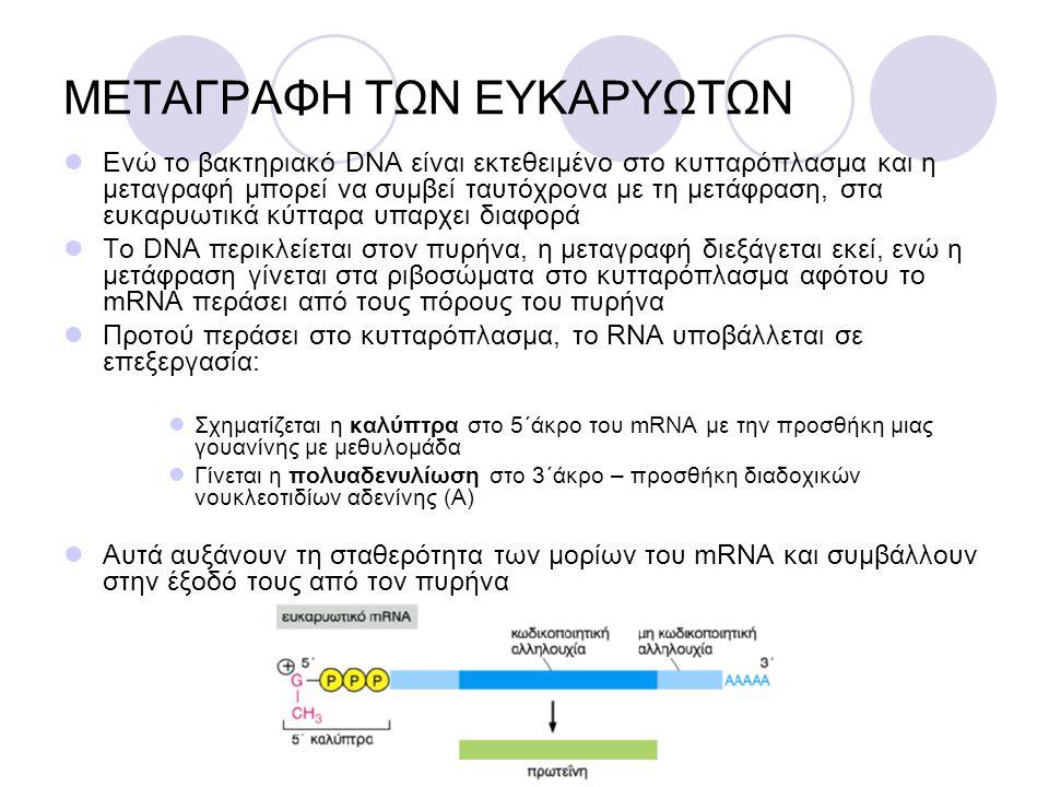 ΜΕΤΑΓΡΑΦΗ ΤΩΝ ΕΥΚΑΡΥΩΤΩΝ Ενώ το βακτηριακό DNA είναι εκτεθειμένο στο κυτταρόπλασμα και η μεταγραφή μπορεί να συμβεί ταυτόχρονα με τη μετάφραση, στα ευ