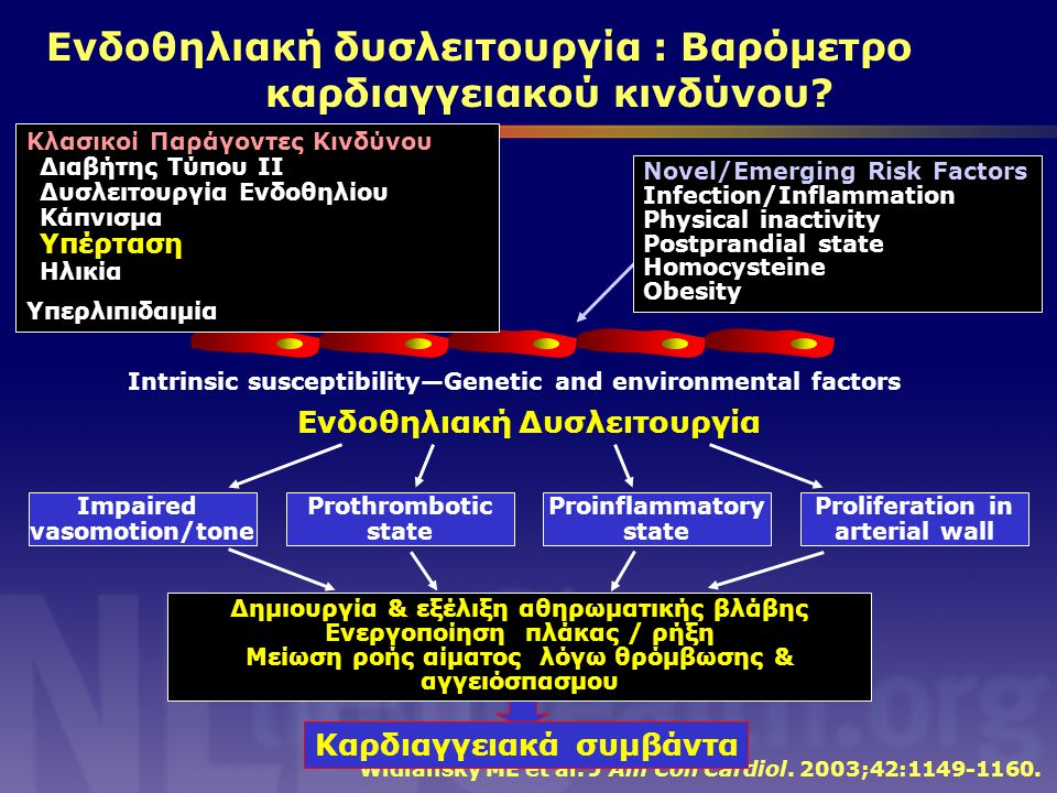 Intrinsic susceptibility—Genetic and environmental factors Widlansky ME et al. J Am Coll Cardiol. 2003;42:1149-1160. Κλασικοί Παράγοντες Κινδύνου Διαβ
