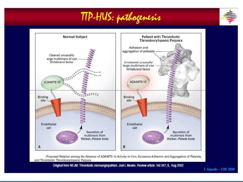 ΤΤΡ/ παθογενετικοί μηχανισμοί Σε ένα ποσοστό ασθενών με ιδιοπαθή ΤΤΡ έχει βρεθεί παρουσία αυτοαντισωμάτων κατά του ενζύμου ADAMTS13.