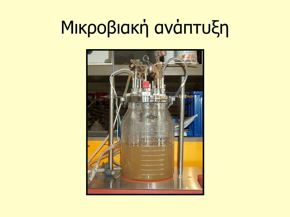 Μικροβιακή ανάπτυξη