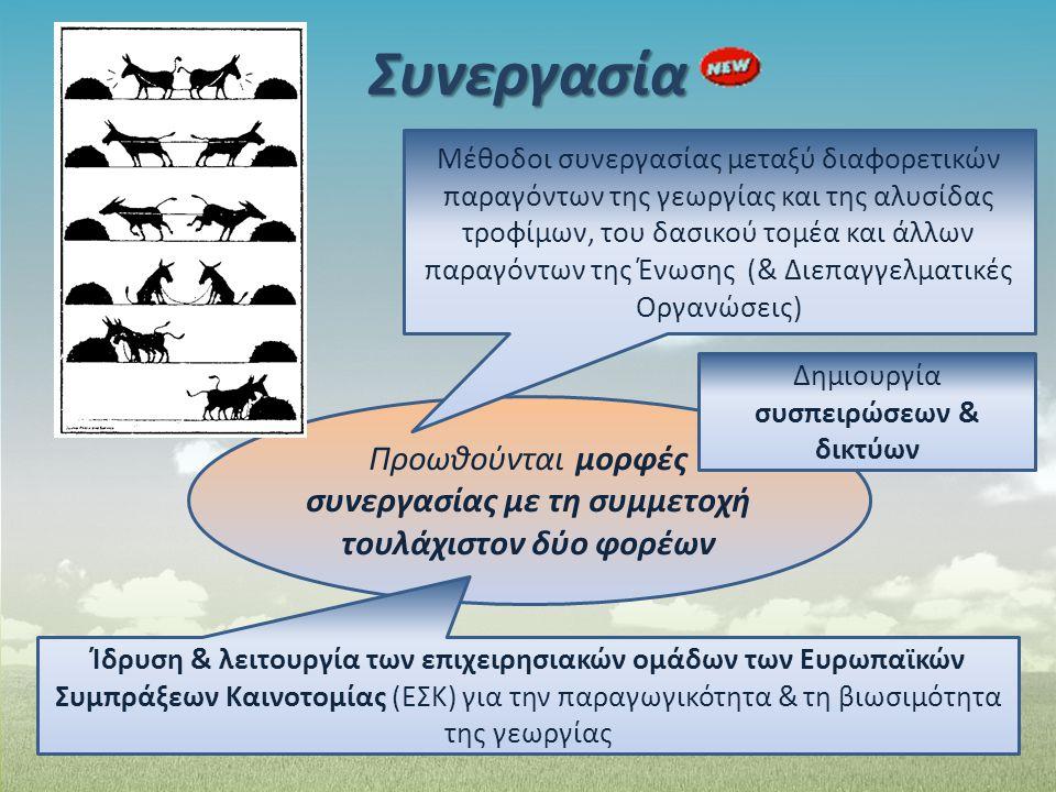 Συνεργασία Προωθούνται μορφές συνεργασίας με τη συμμετοχή τουλάχιστον δύο φορέων Μέθοδοι συνεργασίας μεταξύ διαφορετικών παραγόντων της γεωργίας και τ