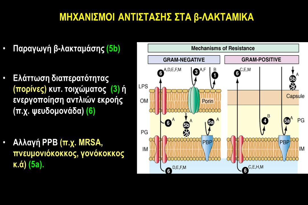 MΗXΑΝΙΣΜΟΙ ΑΝΤΙΣΤΑΣΗΣ ΣΤΑ β-ΛΑΚΤΑΜΙΚΑ Παραγωγή β-λακταμάσης (5b) Ελάττωση διαπερατότητας (πορίνες) κυτ.