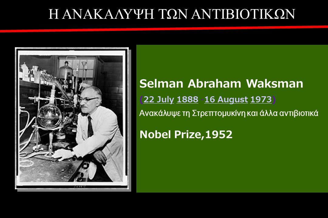 Η ΑΝΑΚΑΛΥΨΗ ΤΩΝ ΑΝΤΙΒΙΟΤΙΚΩΝ Selman Abraham Waksman (22 July 1888 -16 August 1973)22 July 188816 August 1973 Ανακάλυψε τη Στρεπτομυκίνη και άλλα αντιβιοτικά Nobel Prize,1952