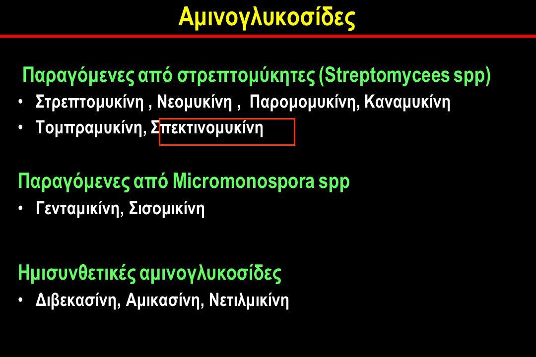 Αμινογλυκοσίδες Παραγόμενες από στρεπτομύκητες (Streptomycees spp) Στρεπτομυκίνη, Νεομυκίνη, Παρομομυκίνη, Καναμυκίνη Τομπραμυκίνη, Σπεκτινομυκίνη Παραγόμενες από Micromonospora spp Γενταμικίνη, Σισομικίνη Ημισυνθετικές αμινογλυκοσίδες Διβεκασίνη, Αμικασίνη, Νετιλμικίνη