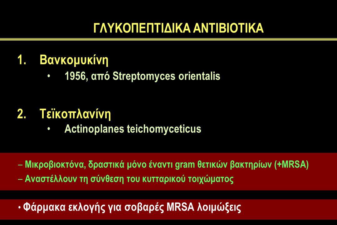 ΓΛΥΚΟΠΕΠΤΙΔΙΚΑ ΑΝΤΙΒΙΟΤΙΚΑ 1.Βανκομυκίνη 1956, από Streptomyces orientalis 2.Τεϊκοπλανίνη Actinoplanes teichomyceticus – Mικροβιοκτόνα, δραστικά μόνο έναντι gram θετικών βακτηρίων (+MRSA) – Αναστέλλουν τη σύνθεση του κυτταρικού τοιχώματος Φάρμακα εκλογής για σοβαρές MRSA λοιμώξεις