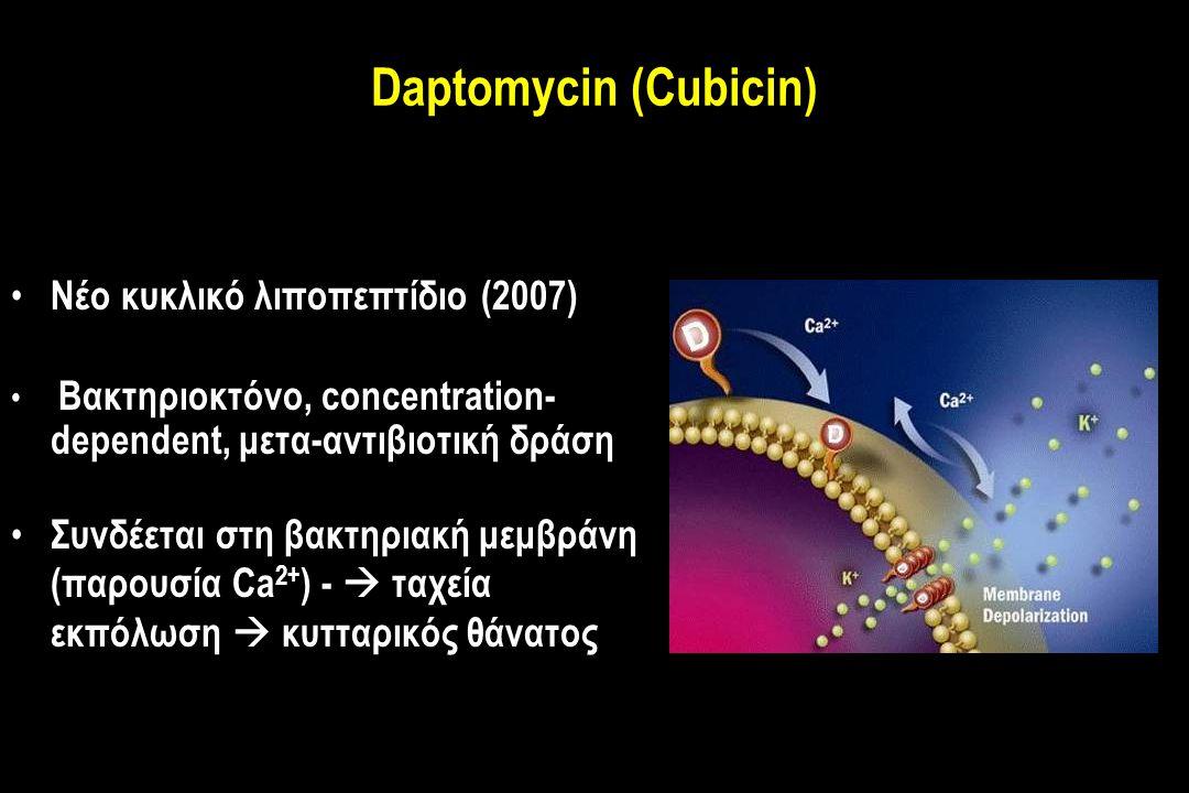 Daptomycin (Cubicin) Νέο κυκλικό λιποπεπτίδιο (2007) Βακτηριοκτόνο, concentration- dependent, μετα-αντιβιοτική δράση Συνδέεται στη βακτηριακή μεμβράνη (παρουσία Ca 2+ ) -  ταχεία εκπόλωση  κυτταρικός θάνατος