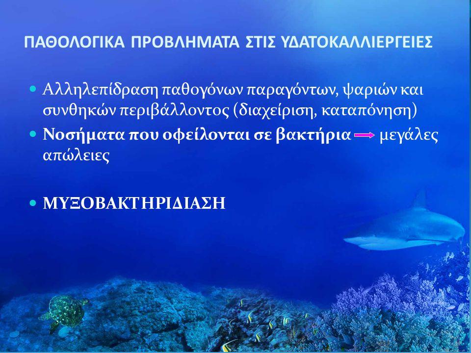 ΠΑΘΟΛΟΓΙΚΑ ΠΡΟΒΛΗΜΑΤΑ ΣΤΙΣ ΥΔΑΤΟΚΑΛΛΙΕΡΓΕΙΕΣ Aλληλεπίδραση παθογόνων παραγόντων, ψαριών και συνθηκών περιβάλλοντος (διαχείριση, καταπόνηση) Νοσήματα π