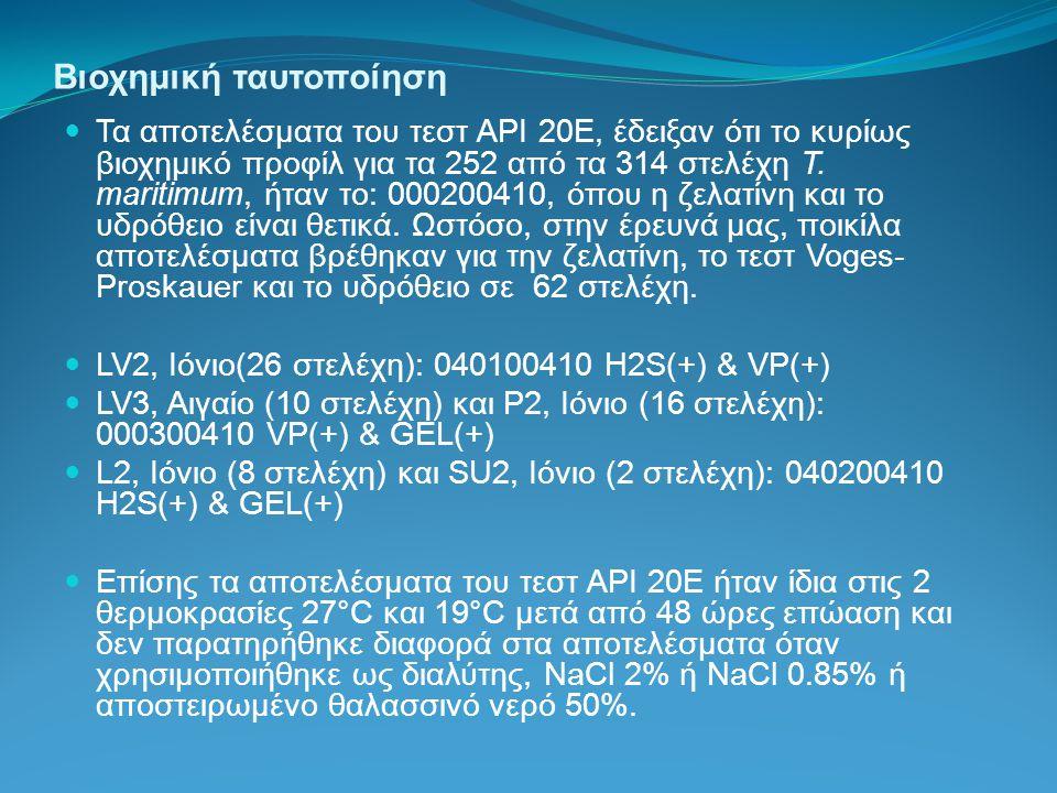 Βιοχημική ταυτοποίηση Τα αποτελέσματα του τεστ API 20E, έδειξαν ότι το κυρίως βιοχημικό προφίλ για τα 252 από τα 314 στελέχη T. maritimum, ήταν το: 00