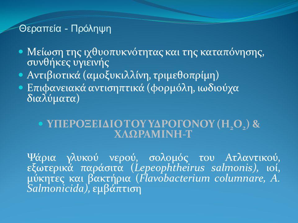 Θεραπεία - Πρόληψη Μείωση της ιχθυοπυκνότητας και της καταπόνησης, συνθήκες υγιεινής Αντιβιοτικά (αμοξυκιλλίνη, τριμεθοπρίμη) Επιφανειακά αντισηπτικά (φορμόλη, ιωδιούχα διαλύματα) ΥΠΕΡΟΞΕΙΔΙΟ ΤΟΥ ΥΔΡΟΓΟΝΟΥ (H 2 O 2 ) & ΧΛΩΡΑΜΙΝΗ-Τ Ψάρια γλυκού νερού, σολομός του Ατλαντικού, εξωτερικά παράσιτα (Lepeophtheirus salmonis), ιοί, μύκητες και βακτήρια (Flavobacterium columnare, A.