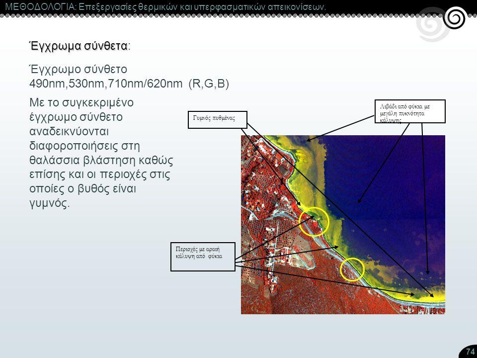 74 ΜΕΘΟΔΟΛΟΓΙΑ: Επεξεργασίες θερμικών και υπερφασματικών απεικονίσεων. Έγχρωμα σύνθετα Έγχρωμα σύνθετα: Λιβάδι από φύκια με μεγάλη πυκνότητα κάλυψης Π
